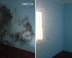 mould-removal-before-and-after