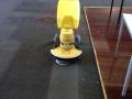 Carpet Cleaning Adelaide Hills - Cimex Demo