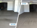 Carpet Cleaning Adelaide Before & After with Rotovac
