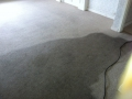Carpet Cleaning in Adelaide 360i in Progress - 2